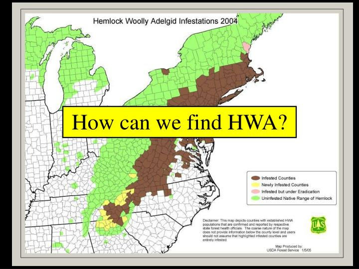 How can we find HWA?