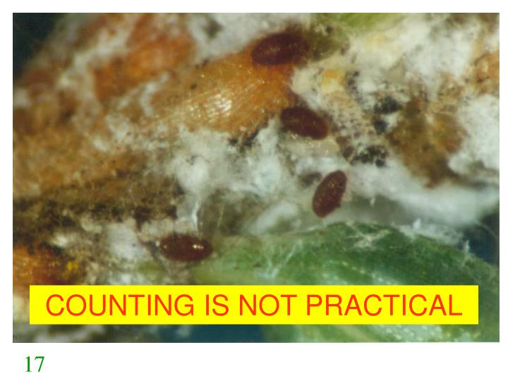 COUNTING IS NOT PRACTICAL