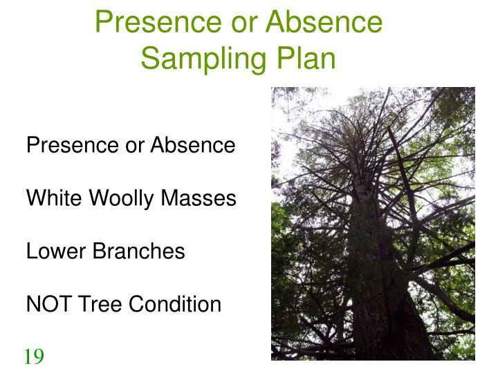 Presence or Absence Sampling Plan