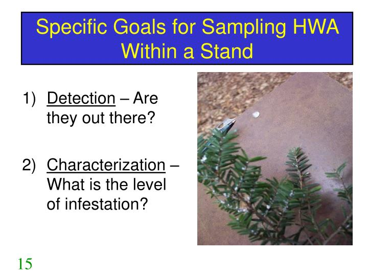 Specific Goals for Sampling HWA Within a Stand