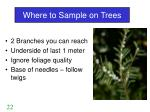 where to sample on trees