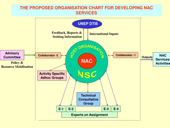 THE PROPOSED ORGANISATION CHART FOR DEVELOPING NAC SERVICES
