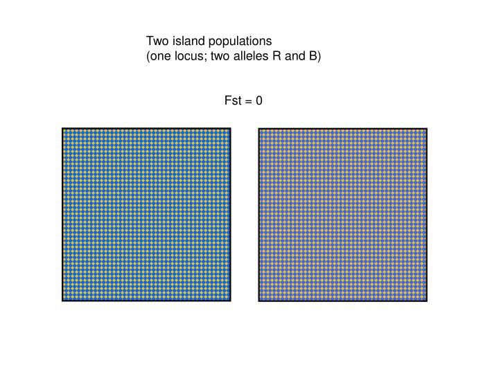 Two island populations