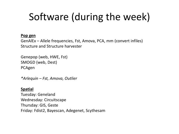 Software (during the week)