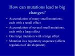 how can mutations lead to big changes