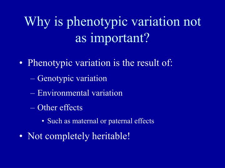 Why is phenotypic variation not as important?