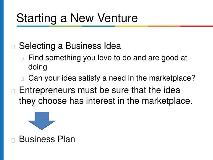Selecting a Business Idea