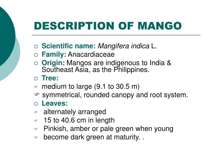 DESCRIPTION OF MANGO