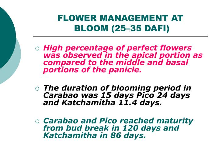 FLOWER MANAGEMENT AT