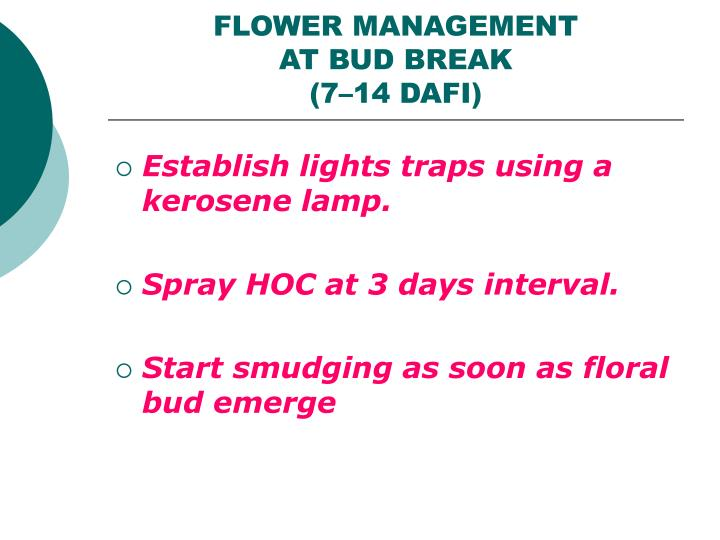 FLOWER MANAGEMENT