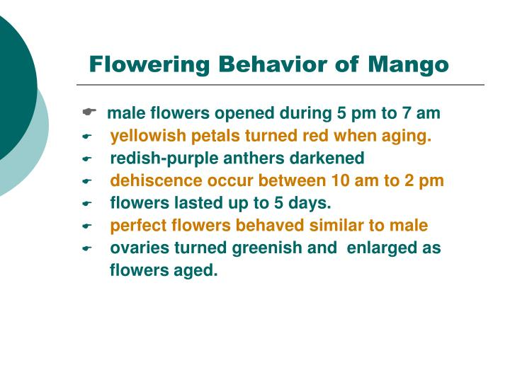 Flowering Behavior of Mango