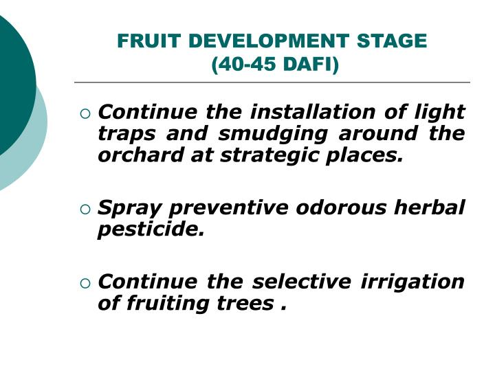 FRUIT DEVELOPMENT STAGE