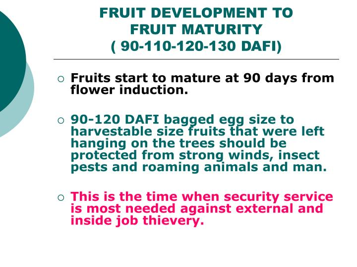 FRUIT DEVELOPMENT TO