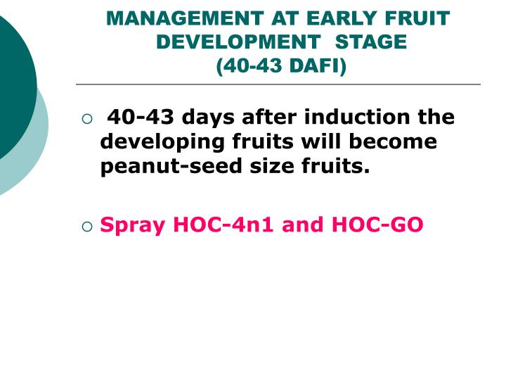 MANAGEMENT AT EARLY FRUIT