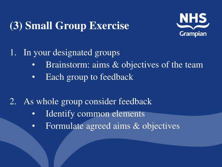 (3) Small Group Exercise