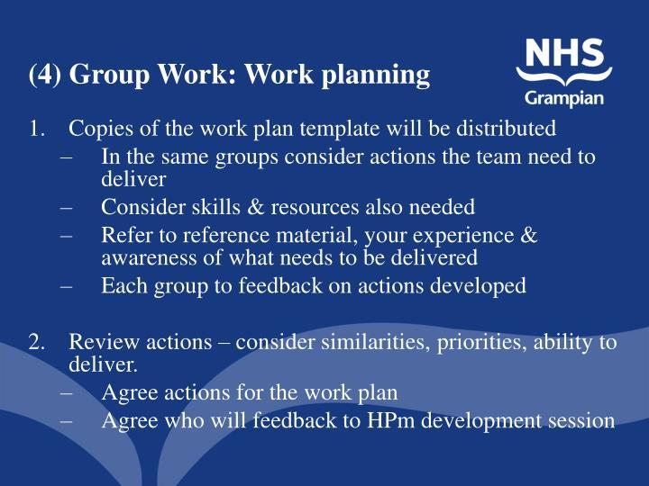 (4) Group Work: Work planning