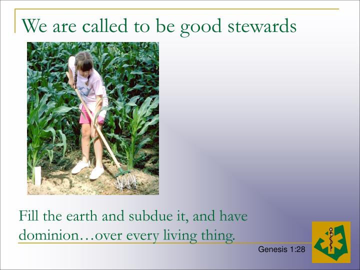 We are called to be good stewards