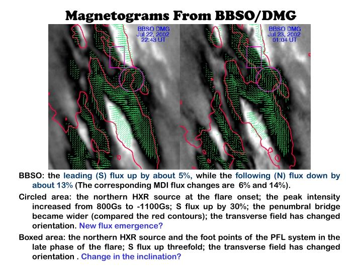 Magnetograms From BBSO/DMG