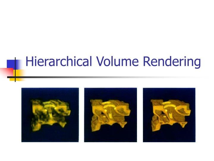 hierarchical volume rendering