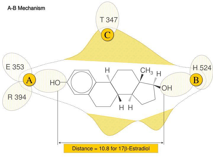 A-B Mechanism