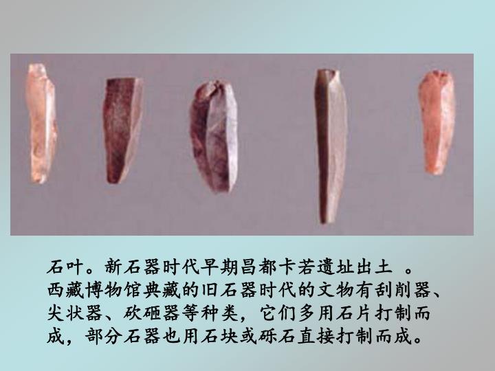 石叶。新石器时代早期昌都卡若遗址出土 。西藏博物馆典藏的旧石器时代的文物有刮削器、尖状器、砍砸器等种类,它们多用石片打制而成,部分石器也用石块或砾石直接打制而成。