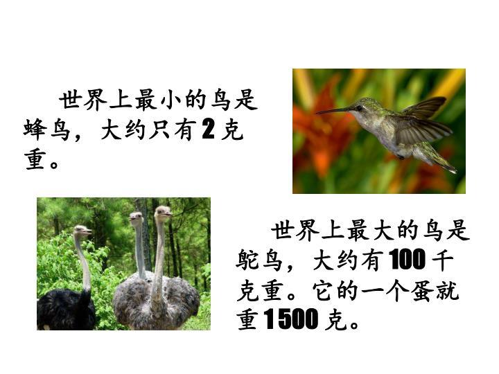 世界上最小的鸟是蜂鸟,大约只有