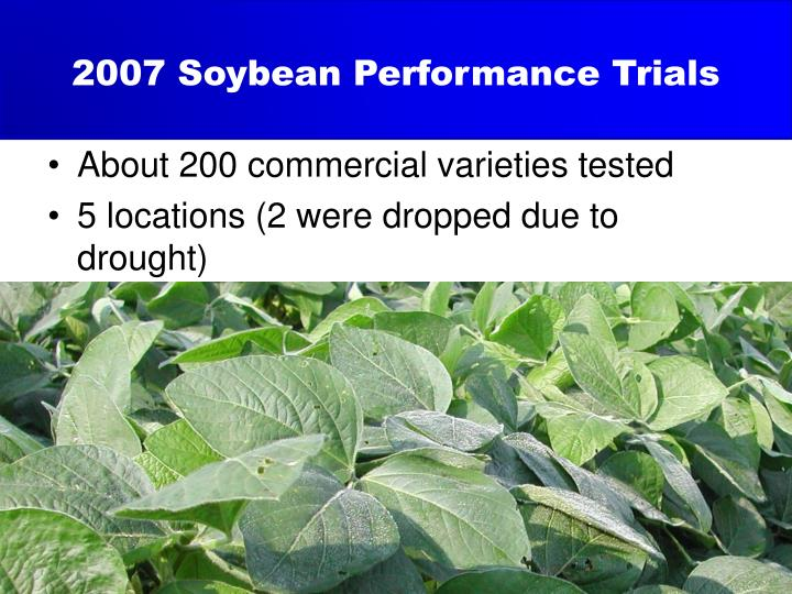 2007 Soybean Performance Trials