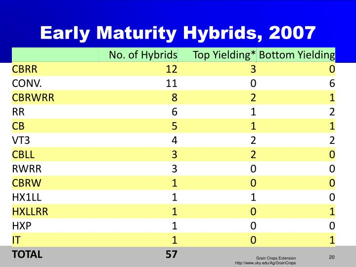 Early Maturity Hybrids, 2007
