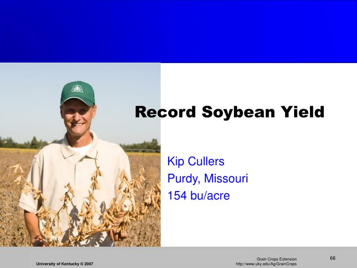 Record Soybean Yield