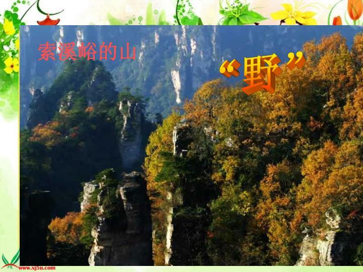 索溪峪的山