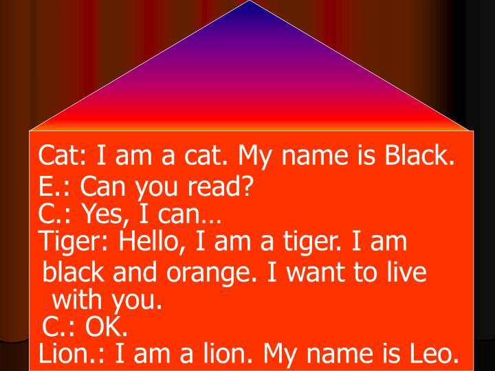 Cat: I am a cat. My name is Black.