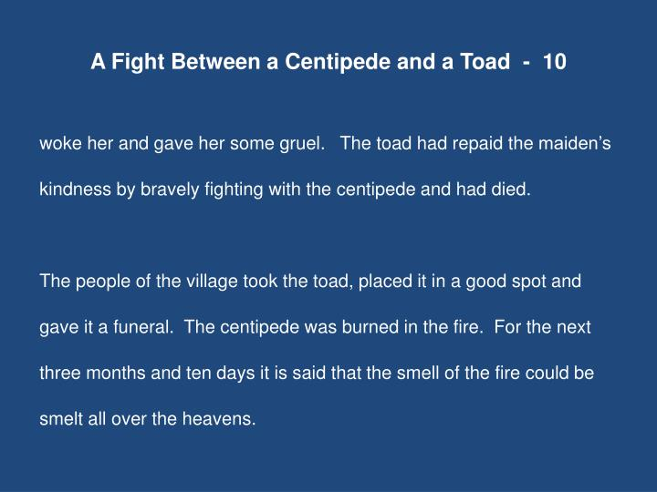 A Fight Between a Centipede and a Toad  -  10