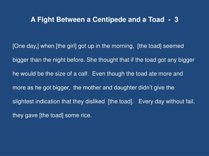 A Fight Between a Centipede and a Toad  -  3