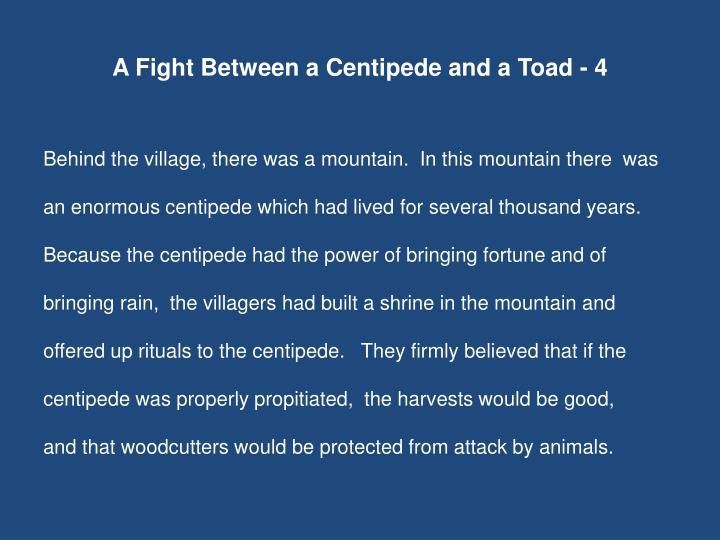 A Fight Between a Centipede and a Toad - 4