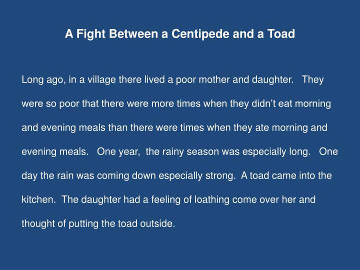 A Fight Between a Centipede and a Toad
