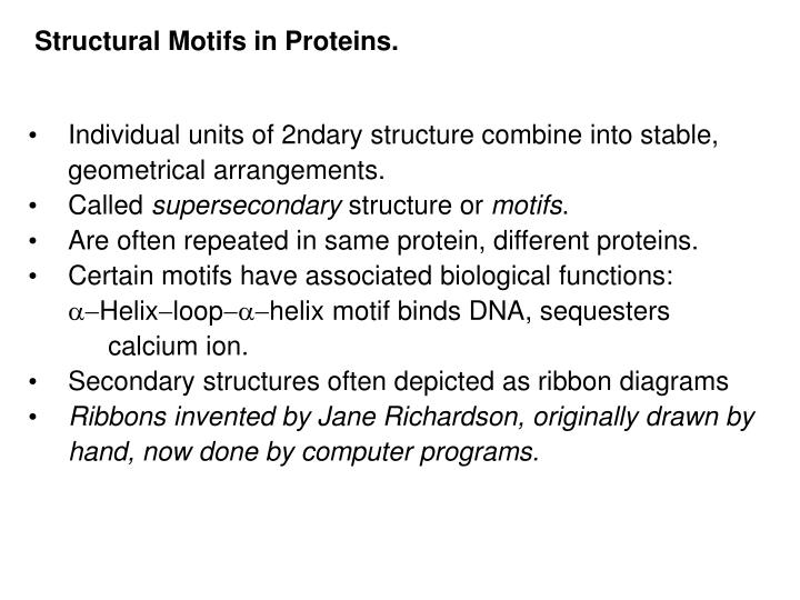 Structural Motifs in Proteins.