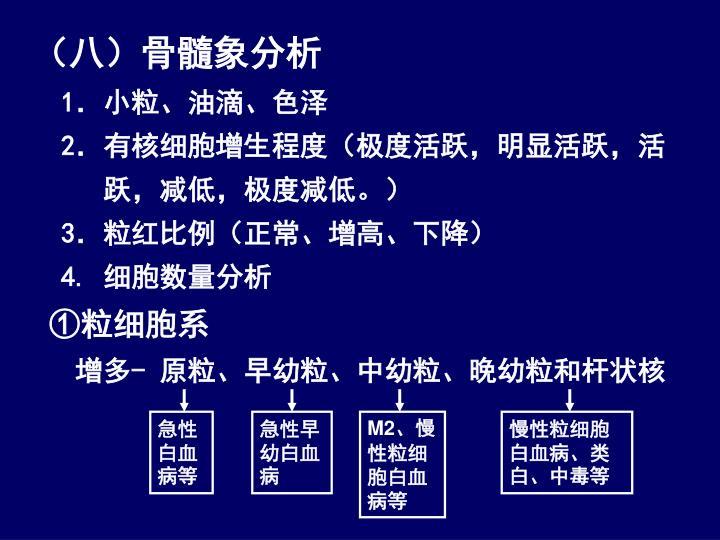(八)骨髓象分析
