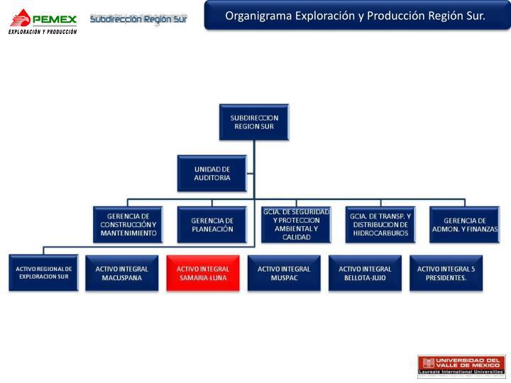 Organigrama Exploración y Producción Región Sur.