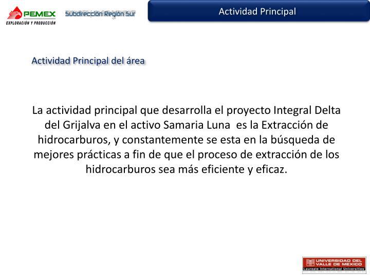 Actividad Principal