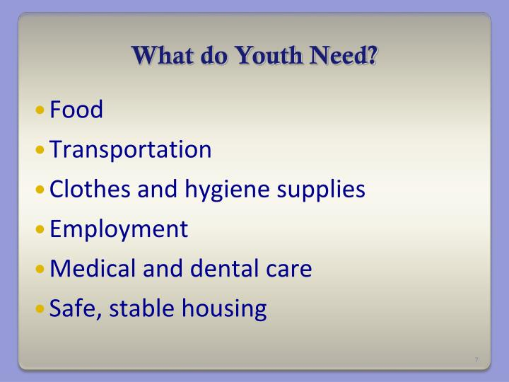 What do Youth Need?