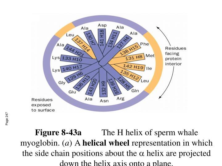 Figure 8-43a