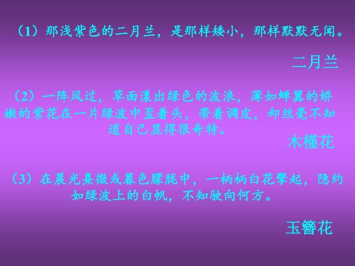 (1)那浅紫色的二月兰,是那样矮小,那样默默无闻。