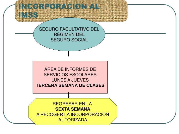 INCORPORACION AL  IMSS