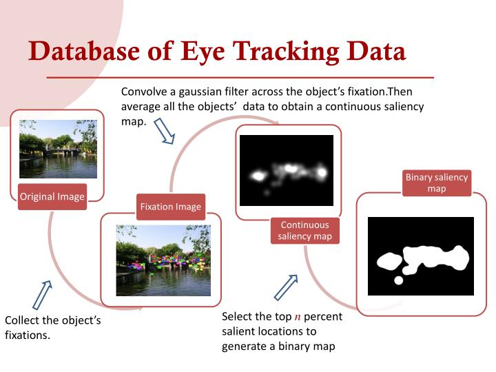 Database of Eye Tracking Data