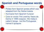 spanish and portuguese words