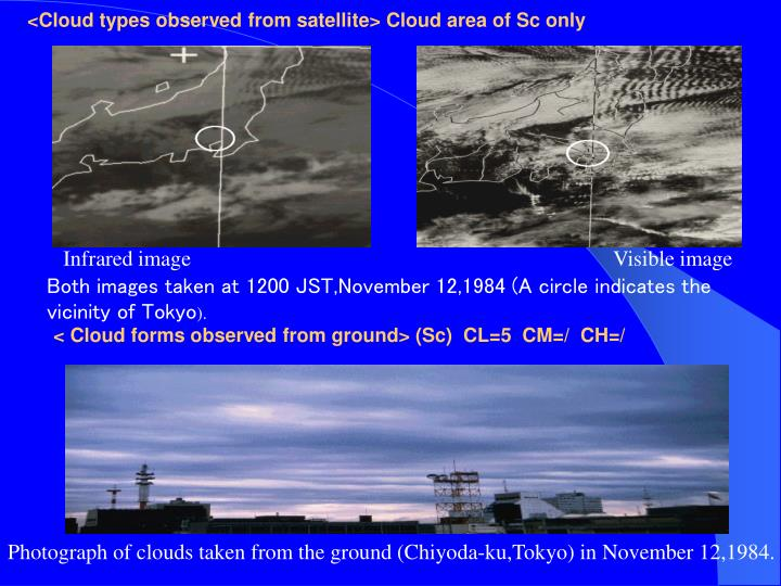 <Cloud types observed from satellite> Cloud area of Sc only
