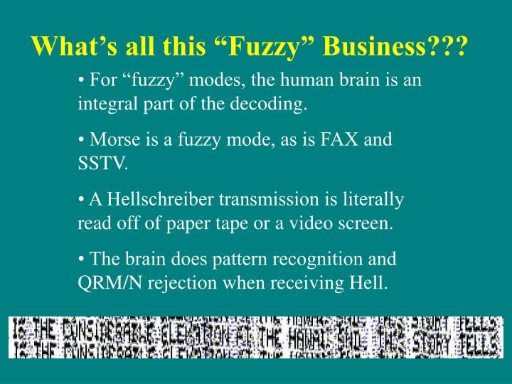 """What's all this """"Fuzzy"""" Business???"""
