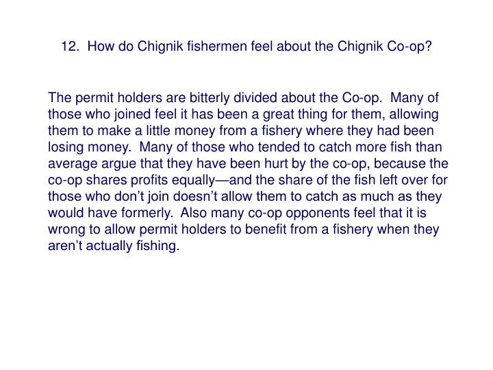 12.  How do Chignik fishermen feel about the Chignik Co-op?