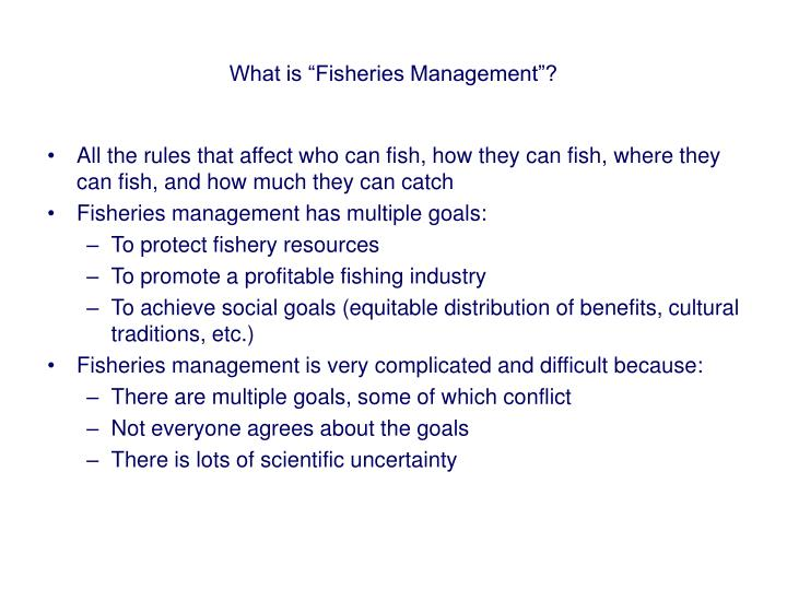 What is fisheries management