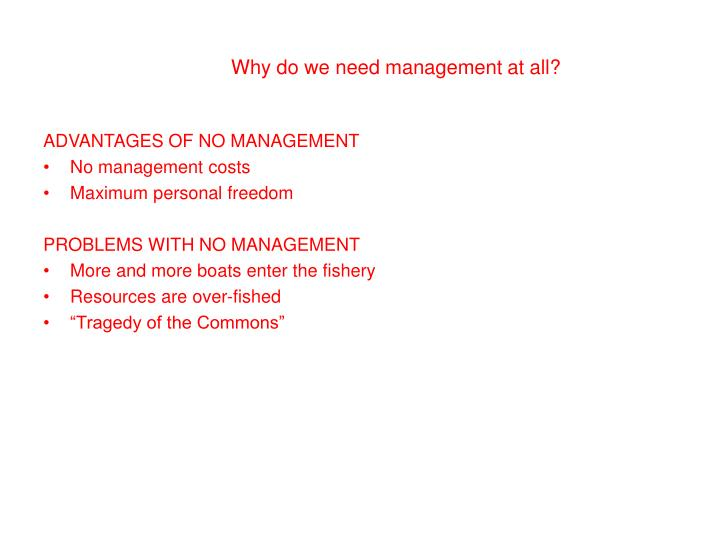 Why do we need management at all?